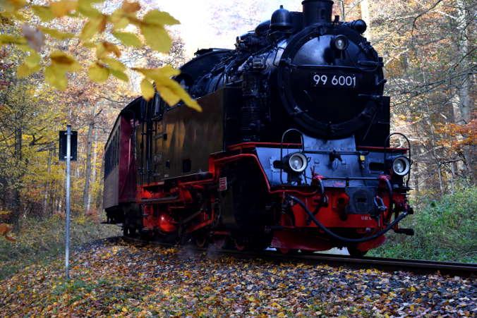 Selketalbahn Dampflok 996001