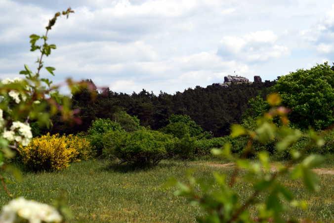 Burg Regenstein Harzer Wandernadel 80