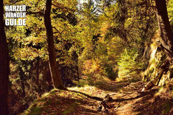 Wanderweg Drahtzug Selkefall