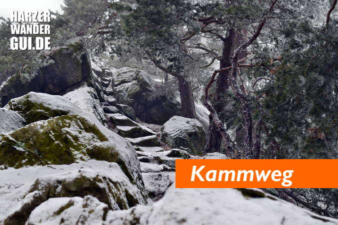 Harzer Teufelsmauerstieg Kammweg